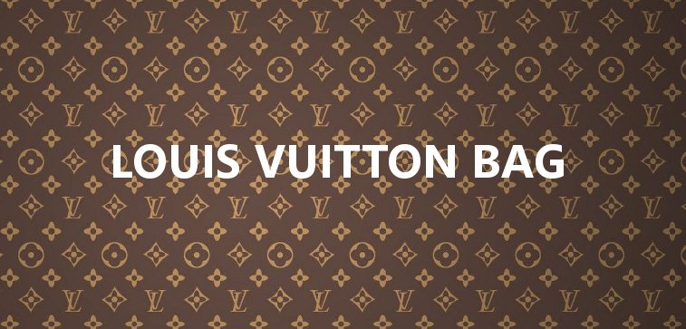 Japanese used Louis Vuitton Bag