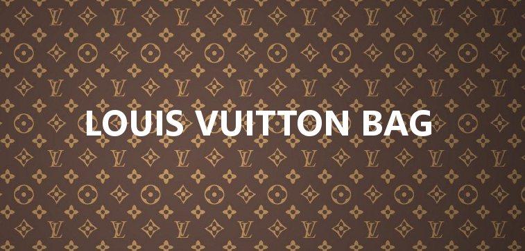 Japanese used Louis Vuitton Bag